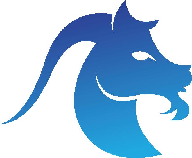 Logo Capricorn Pro